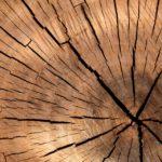 WeWrite Lumber 84678 960 720