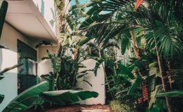WeWrite Blog De Communique De Presse Immobilier Paysagiste Jardin